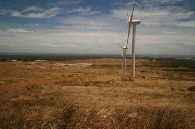 Darling Windmill Farm in Cape Province.jpg (16)